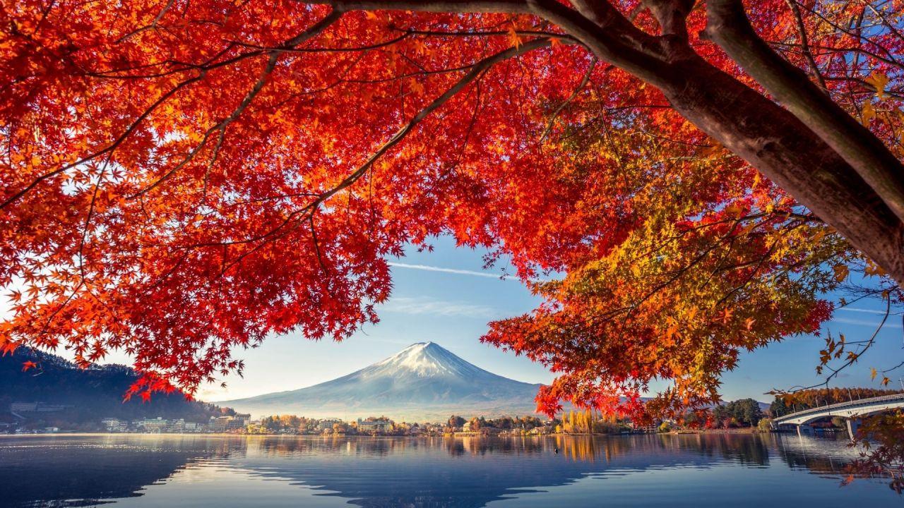 Japonya'da her yolculuk bir masal - Sayfa 4