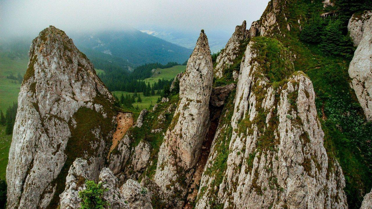 Efsanevi Dracula'nın memleketi: Transilvanya - Sayfa 3