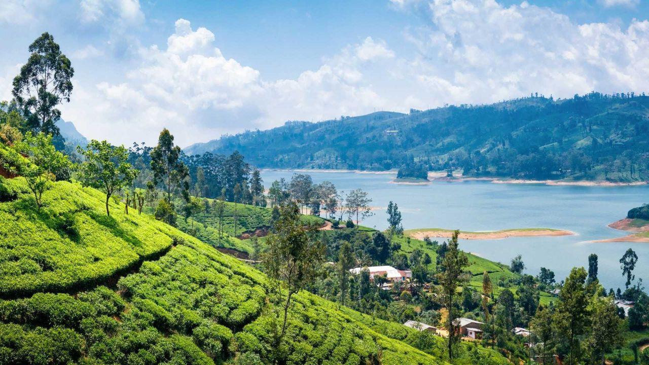 Eşsiz güzelliğiyle: Sri Lanka - Sayfa 4