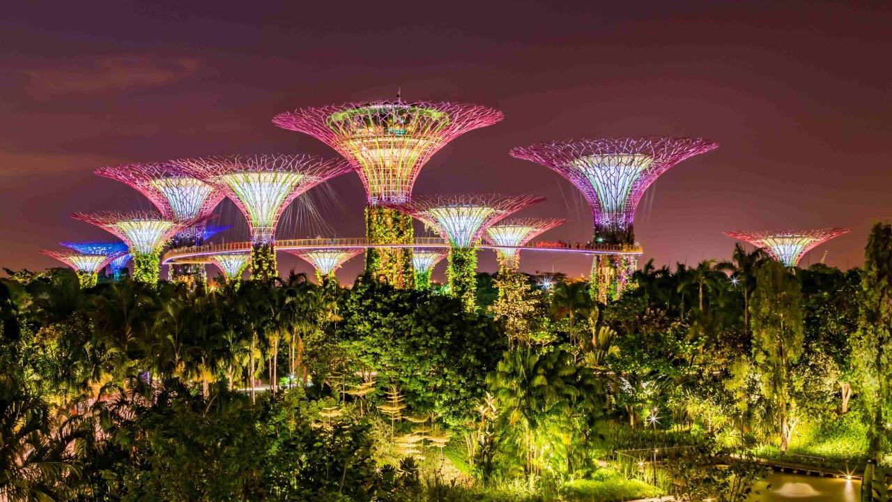 Singapur'un Masalsı Botanik Bahçeleri: Gardens By The Bay