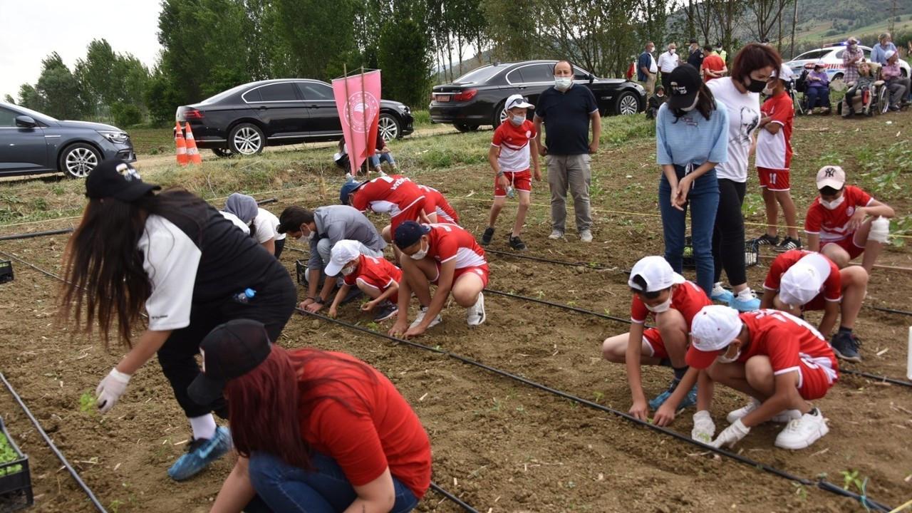 Bilecik'te yüzlerce tohum ve fide engelli bireyler için toprakla buluştu