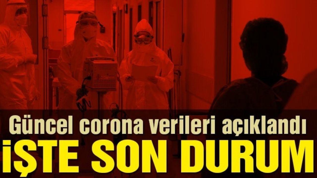 Türkiye'de Koronavirüs 65 can daha aldı