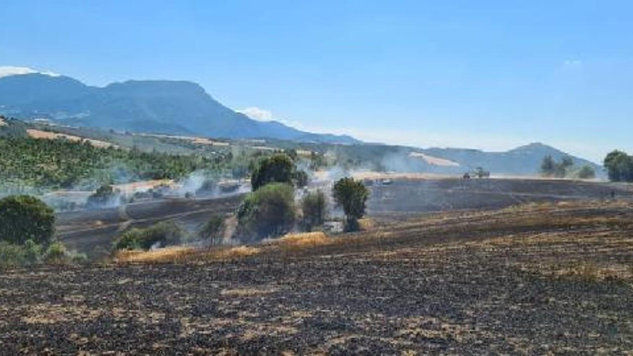 Osmaniye'de 400 dönüm ekili alan yandı