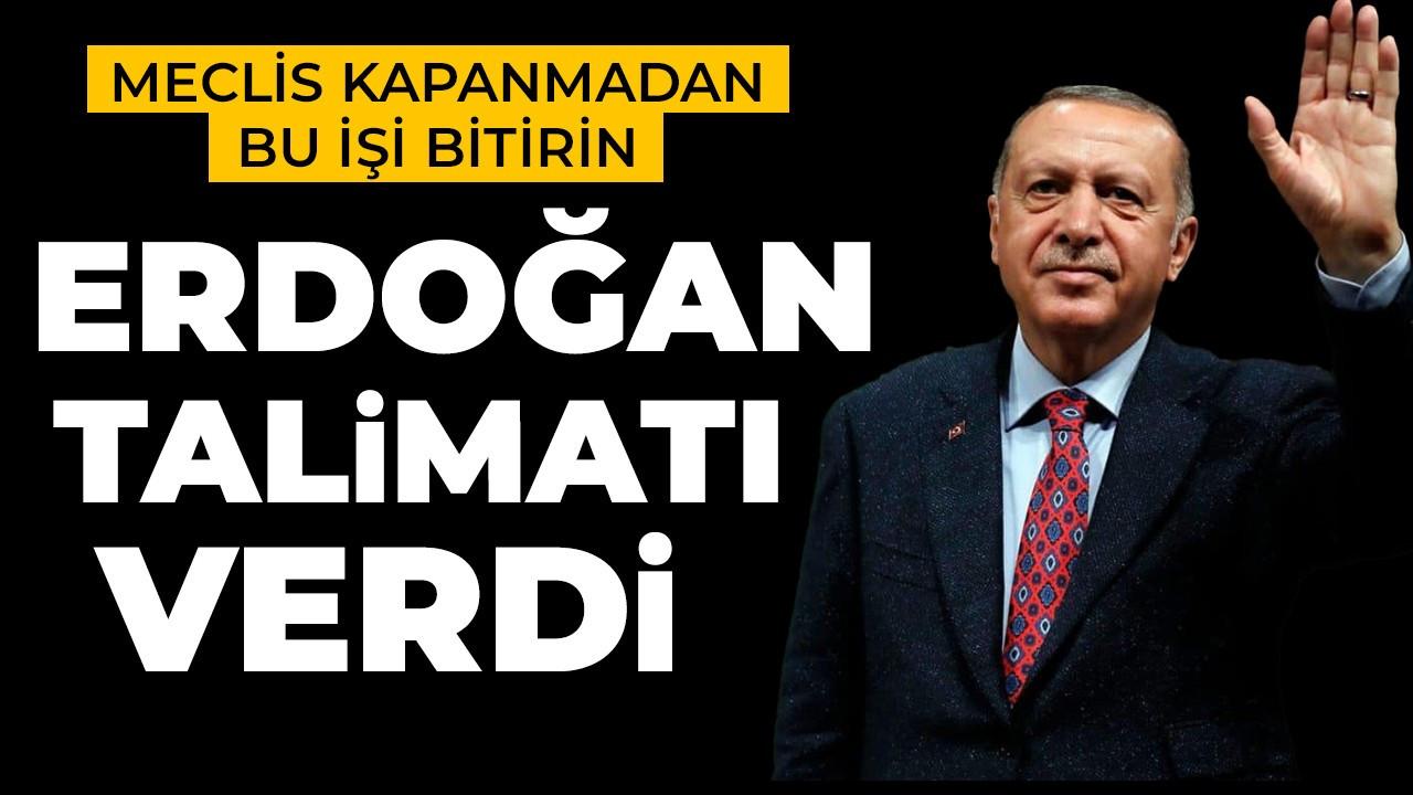 Cumhurbaşkanı Erdoğan'dan hayvan hakları için talimatı verdi