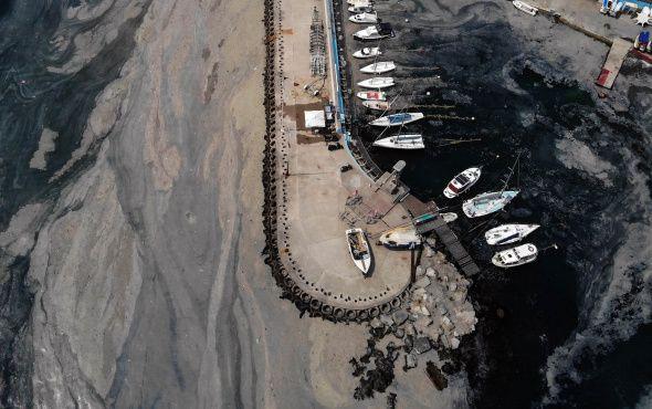 İstanbul'da deniz salyası istilası devam ediyor - Sayfa 3