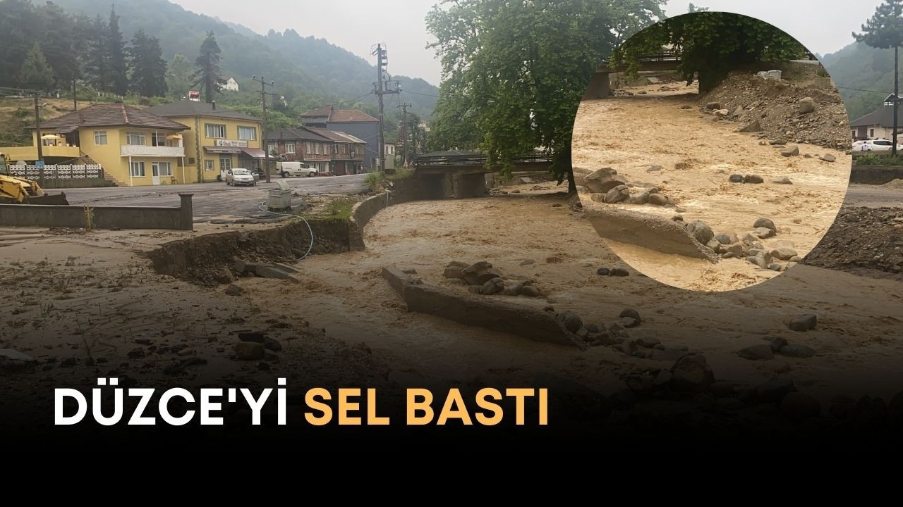 DÜZCE'Yİ SEL BASTI