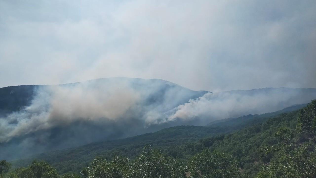 Valilikten yangına ilişkin açıklama