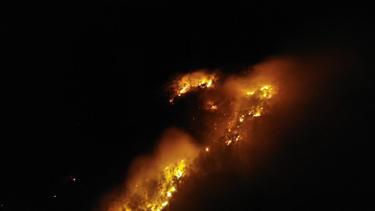 Muş'ta örtü yangını!