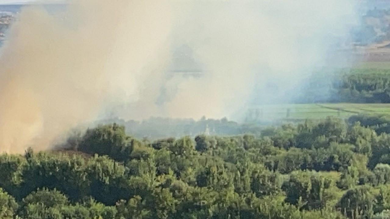 7 bin yıllık Hevsel Bahçeleri'nde korkutan yangın