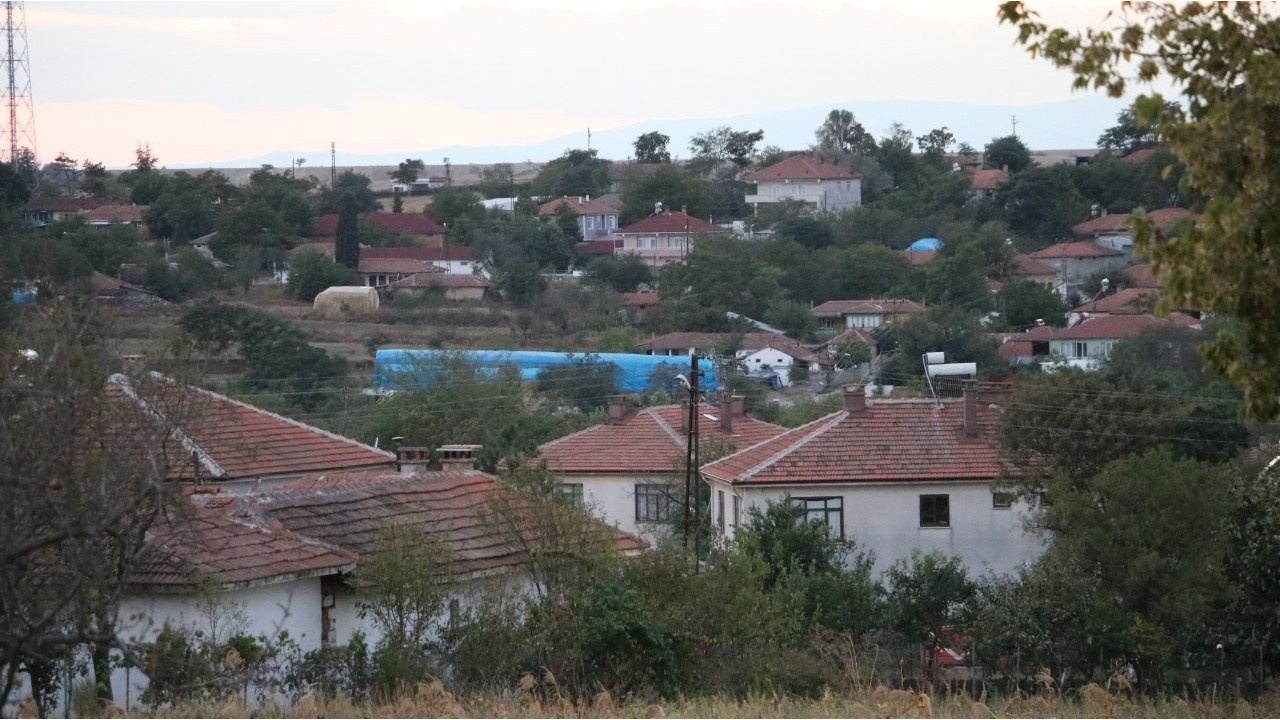 Kan emen sinekten bulaşan 'mavi dil' hastalığı 8 köyü kapattı