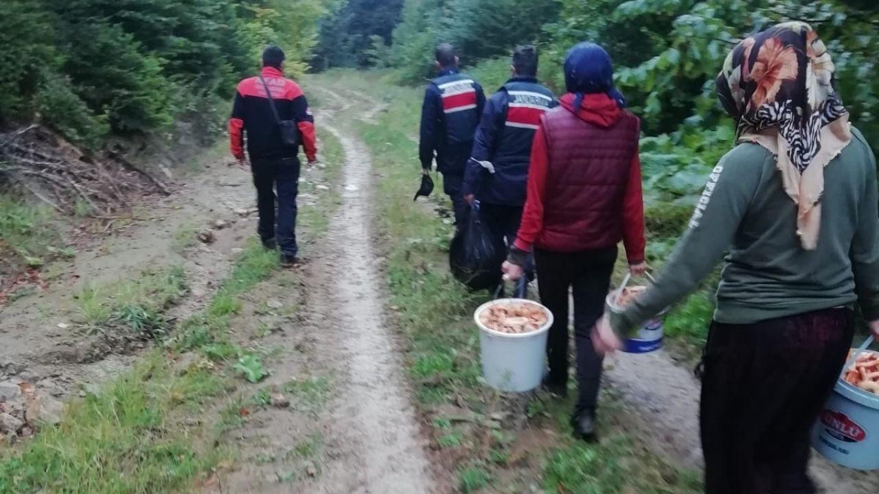 Mantar toplarken kaybolan 6 kişi bulundu