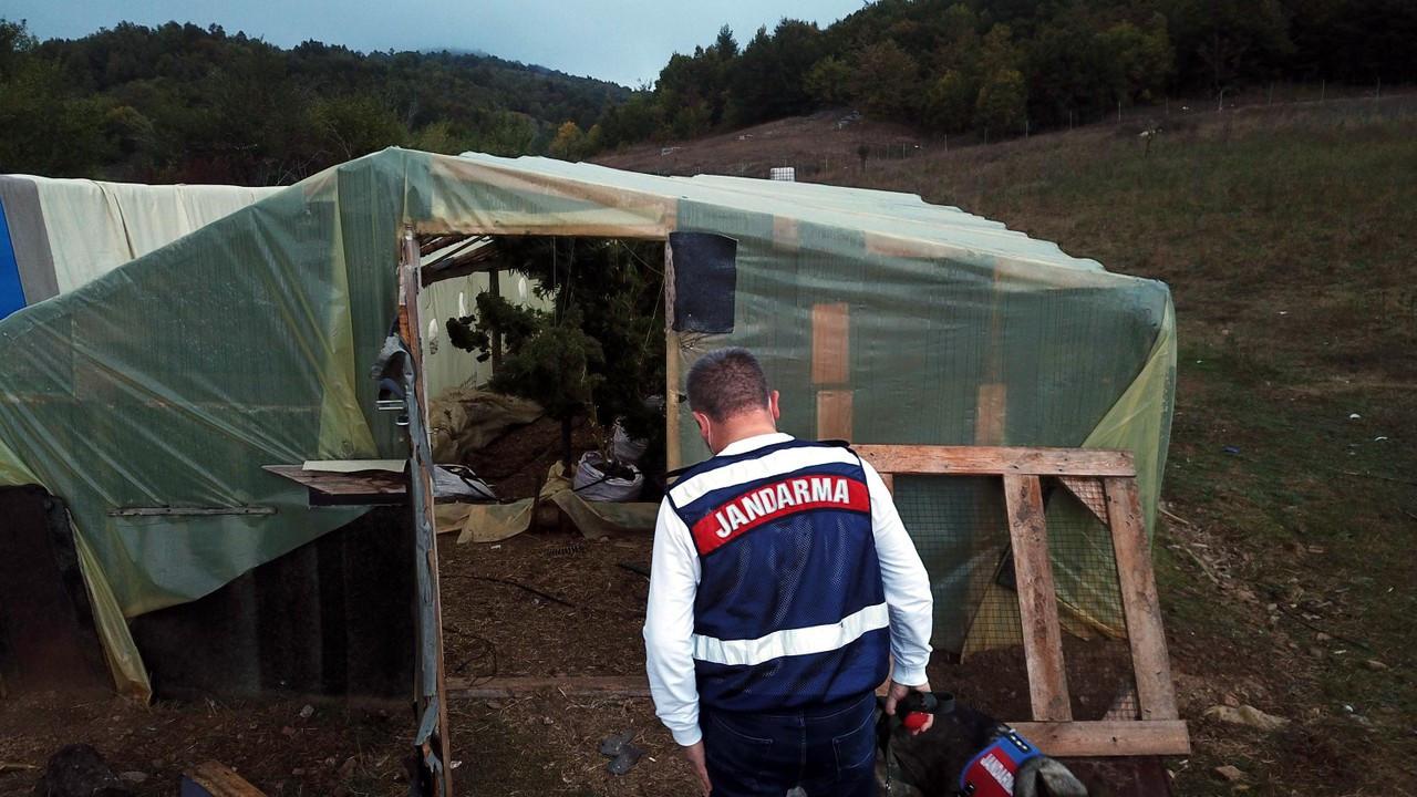 Kırklareli'de çiftlik evine uyuşturucu operasyonu