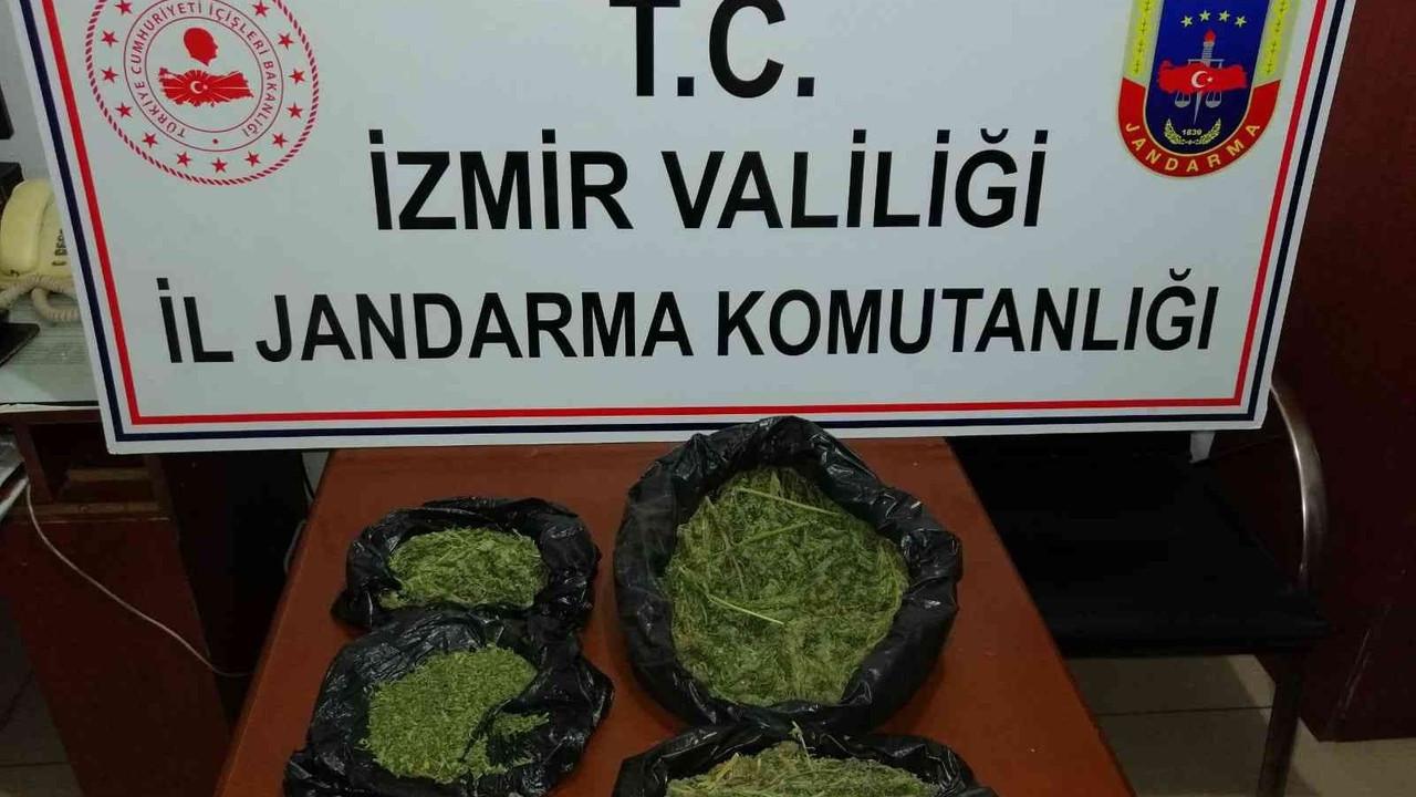 İzmir'de jandarmadan 6 ilçede uyuşturucu operasyonu