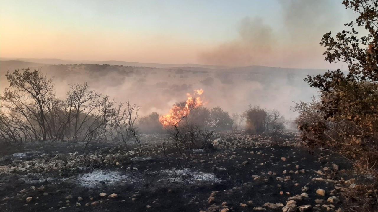 Korkutan orman yangını kontrol altına alındı