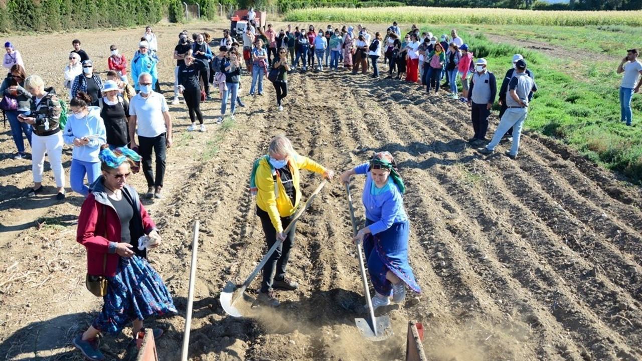 Burhaniye'de kursiyerler tohum ekti ve ıtır hasadı yaptı