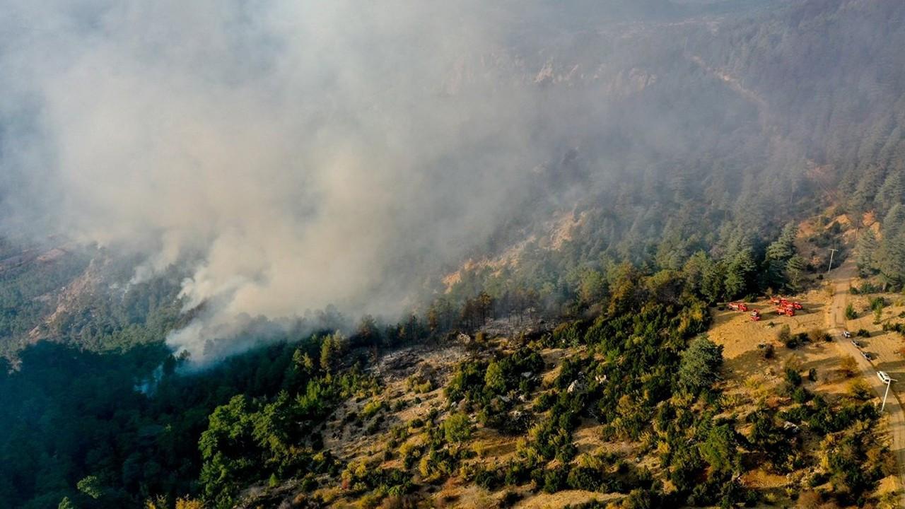 Kemer'deki orman yangını söndürüldü