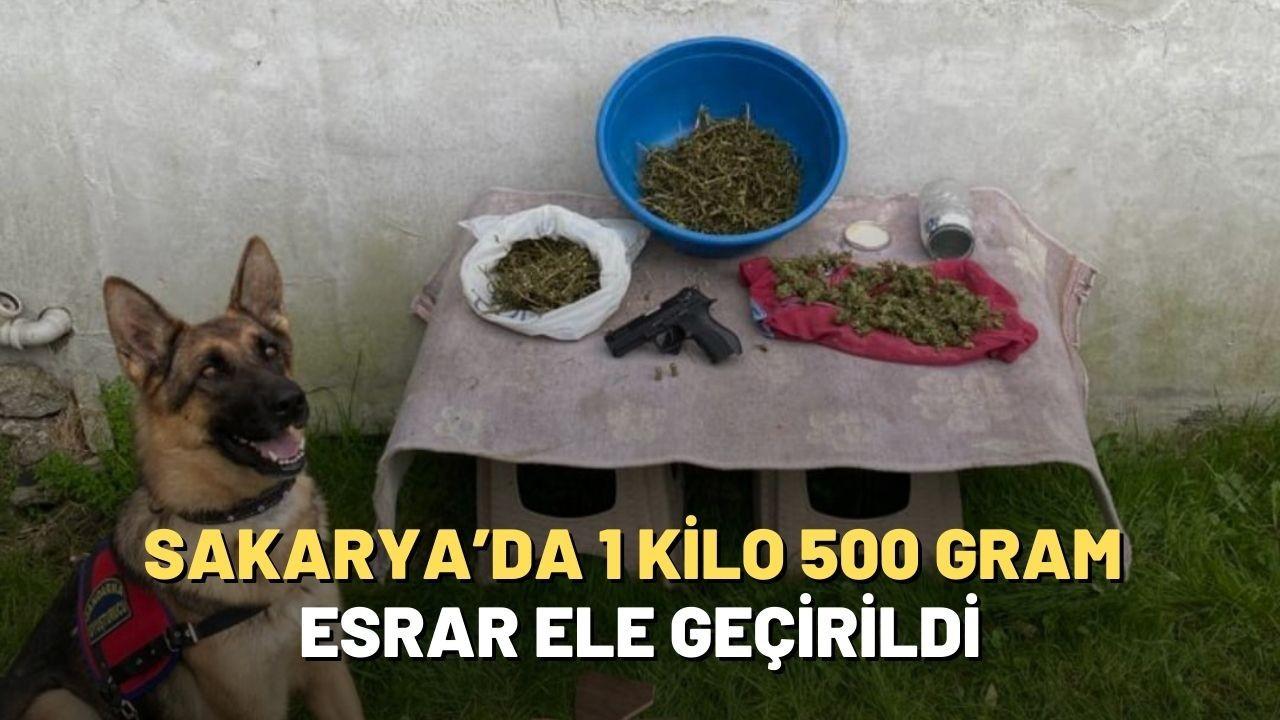 Sakarya'da 1 kilo 500 gram esrar ele geçirildi